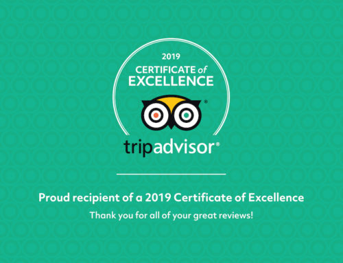 Bohemian Alternative Bar Tours Earns 2019 TRIPADVISOR CERTIFICATE OF EXCELLENCE